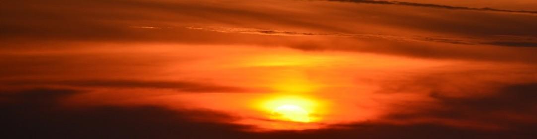 A la rencontre du soleil zoover